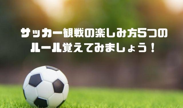 サッカー観戦の楽しみ方5つのルール覚えてみましょう!